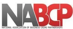 Display nabcp new logo