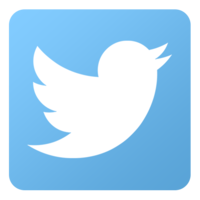 Display_twitter-icon